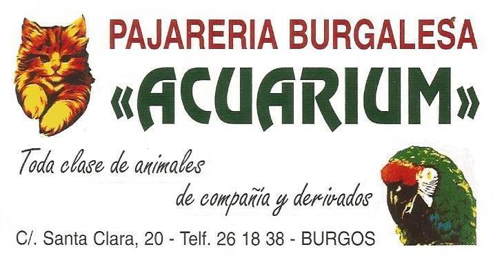 tienda-animales-burgos-acuarium-logo